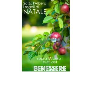 frutti_del_benessere_armonyapeb