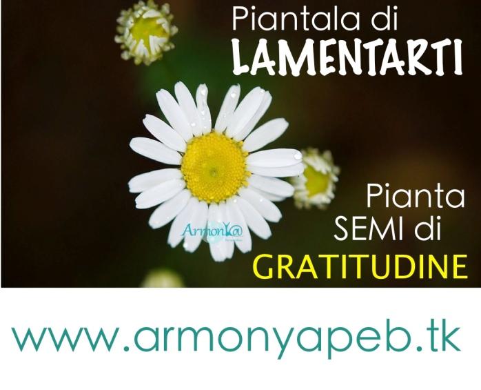gratitudine_armonyapeb